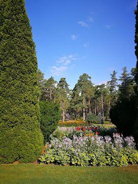 Furuvikin puutarha